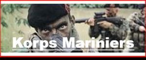 plaatje mariniers blog